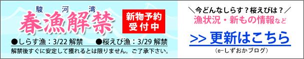 春漁解禁2021